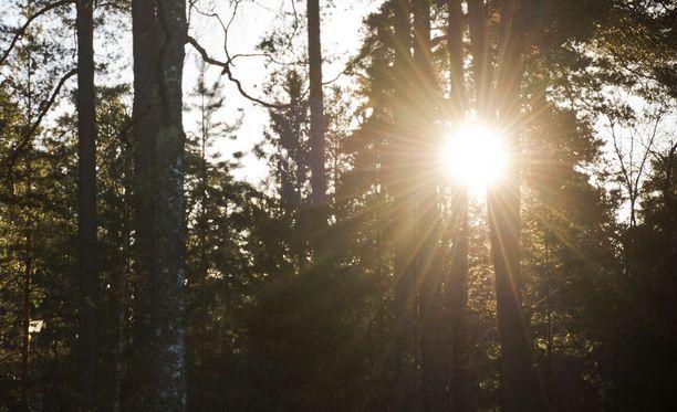 Suomi sijoittui jälleen toiseksi cleantech-vertailussa.