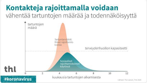 Graafi selittää, miksi THL haluaa nimenomaisesti pidentää epidemiaa rajoituksilla. Tartuntamäärää kuvaavat käyrät lähenevät muodoltaan Gaussin käyrää.