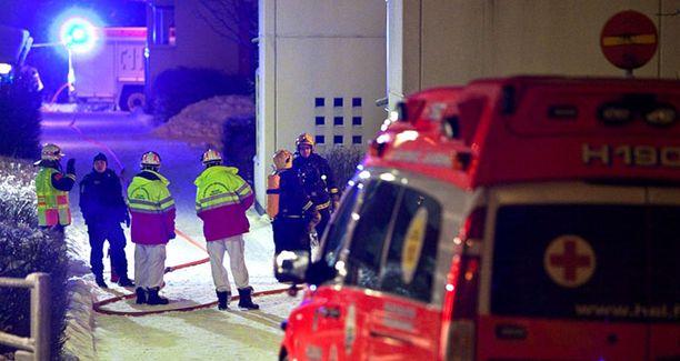 Pelastuslaitoksen työntekijät löysivät sammutustehtäviin mennessä asunnosta kolme ruumista.