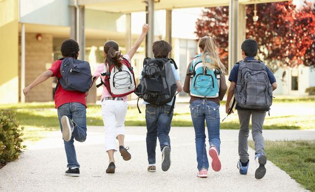 Päättäjät haluavat puuttua siihen, että tyttöjen ja poikien keskimääräisissä oppimistuloksissa on eroa ja opetus on sukupuolittunutta.