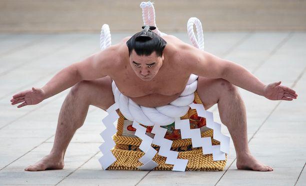 Harumafuji lukeutuu suompainin suurimpiin tähtiin.