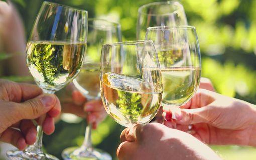 Täsmälleen tietty määrä alkoholia voi auttaa pitämään aivot vetreinä - älä ylitä rajaa!