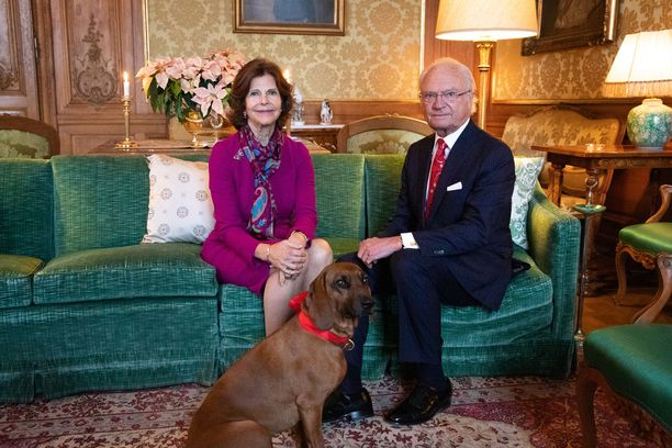 Kaarle Kustaa ei liikennetarkastuksissa jonottele. Kuva on Kaarle Kustaan ja Silvian tuorein joulutervehdys.