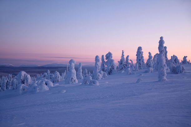 Talvisen Lampivaaran laella vallitsee rauha.