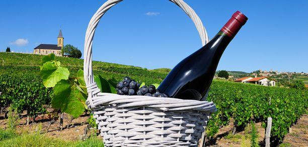 Ranskan viinintuotannon arvioidaan jäävän tänä vuonna noin 4 340 miljoonaan litraan, kun se viime vuonna oli 4 940 miljoonaa litraa.