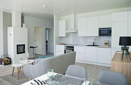 Pikkusirkun keittiö, olohuone ja ruokailutila ovat samassa tilassa.