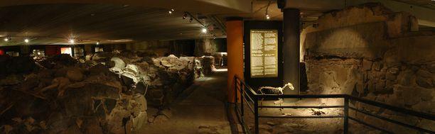 Aboa Vetuksessa pääsee tutustumaan arkeologisten kaivausten paljastamaan keskiaikaiseen Turkuun.