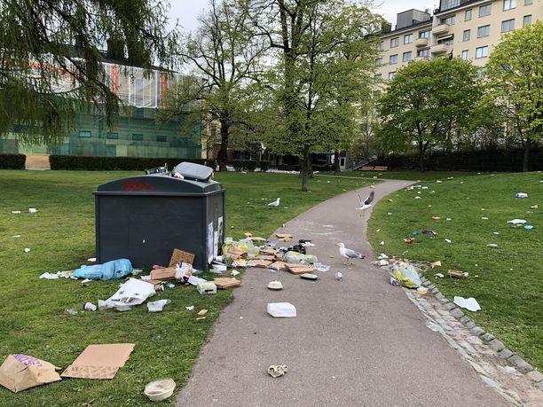 Lokit penkoivat sunnuntaiaamuna Sinebrychoffin puistoon lauantaina jääneitä roskia.