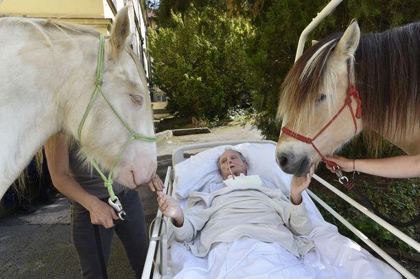 Vanhainkodin asukas silittelee hevosia vanhainkodin edustalla.