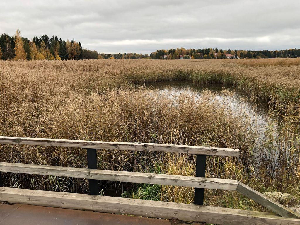 """Östersundomilaisten mielestä Helsinki on """"unohtanut"""" kaappaamansa alueen ja tämä näkyy kaikessa. """"Esimerkiksi puhelin ei aina kuulu, koska verkkoyhteyksiä ei ole parannettu vuosiin ja tv-kanavista näkyvät parhaiten Viron kanavat"""", Jukka Paatero kertoo."""