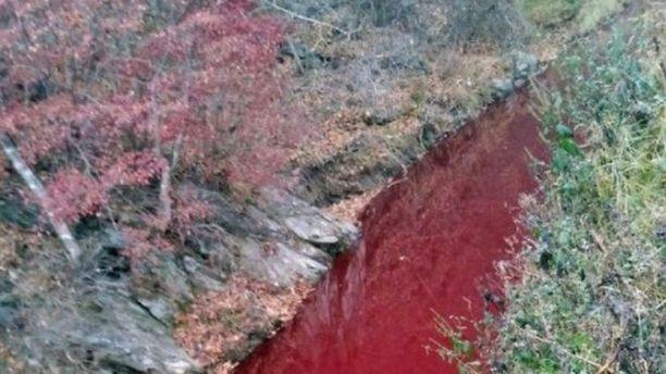 Imjin-joen vesi värjäytyi punaiseksi sikojen verestä.