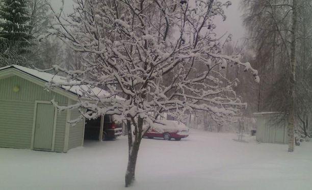 Nurmeksessa vapuksi saatiin monta senttiä lunta.