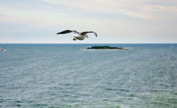 Itämeren vesi on ennätysmatalalla.