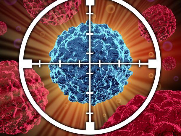 """CAR-T-hoidossa potilaan omat puolustussolut """"trimmataan"""" käymään entistä aggressiivisemmin syöpäsolujen kimppuun."""