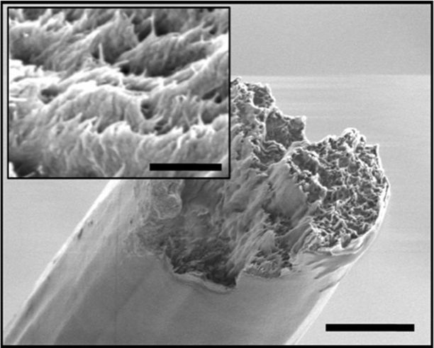 Kuninkaallisen teknillisen korkeakoulun (KHT) kuvassa poikkileikkaus nanokuidusta.