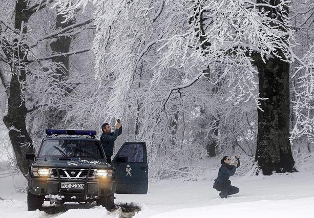 Espanjalaiset poliisit innostuivat ottamaan lumikuvia navarralaisessa metsässä.