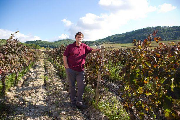Alessio Planeta on yksi viininviljelijöistä Sambucan reunamilla. Hänen tilansa nimi on Ulmo, sen tuottamia Planeta-nimellä tunnettuja viinejä myydään Alkossakin.