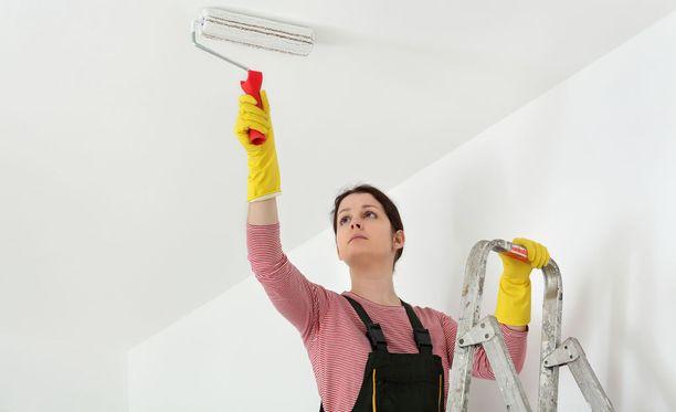 Castrén arvioi, että 40 neliön asunnon katon maalaaminen kustantaa muutaman satasen, jos katon maalaa itse.