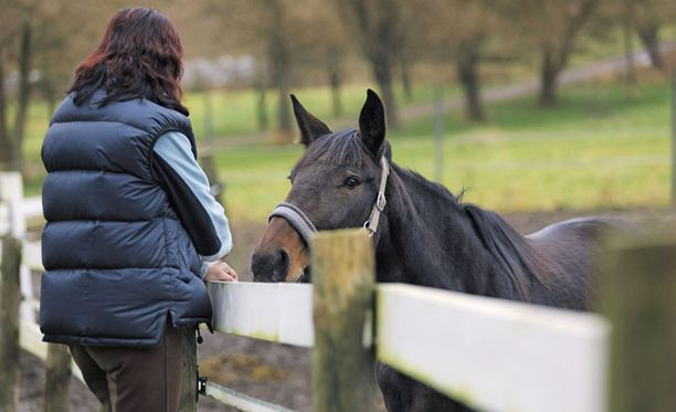 RASKAS VUOSI Hevoset ja ystävät auttavat Anne-Maria jaksamaan. Hän halusi kertoa tarinansa herättääkseen keskustelua.