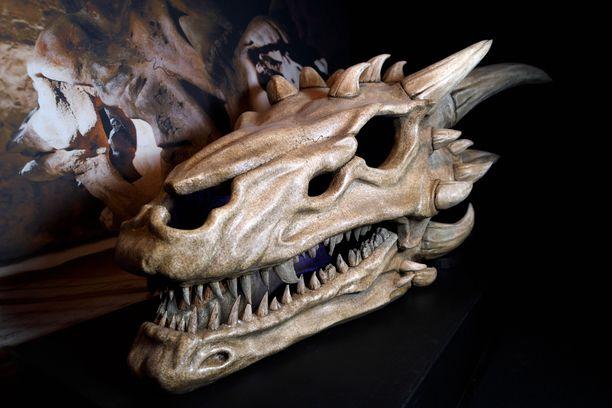 Lohikäärmeen kallo on yksi näyttelyesineistä.