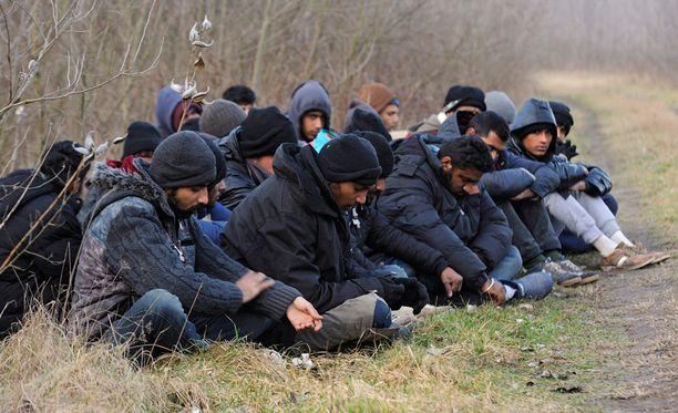 Ryhmä pakistanilaisia, intialaisia ja nepalilaisia pidätettiin 9. helmikuuta, kun he olivat rikkoneet raja-aitaa ja tulleet sen läpi Unkariin.