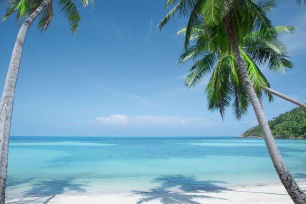 Malediivien valkoiset rannat ovat suosittu häämatkakohde. Unelmalomasta ollaan valmiita maksamaan paljon.