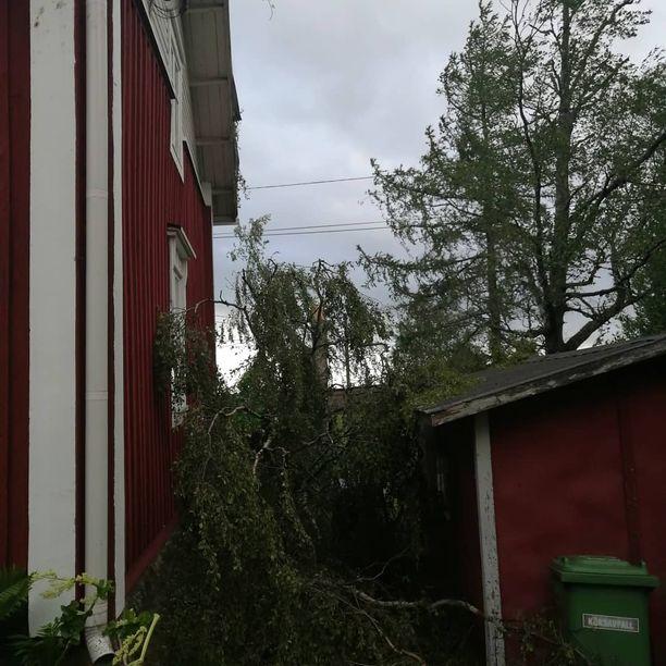 Tältä näytti yhdellä kotipihalla Närpiön Finbyssä.