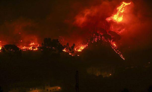 Viime vuoden tuhoisissa paloissa kuoli 114 ihmistä.