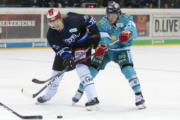 Vili Sopanen on pelannut tällä kaudella 31 DEL-liigan ottelua ja kerännyt niissä 13 tehopistettä.