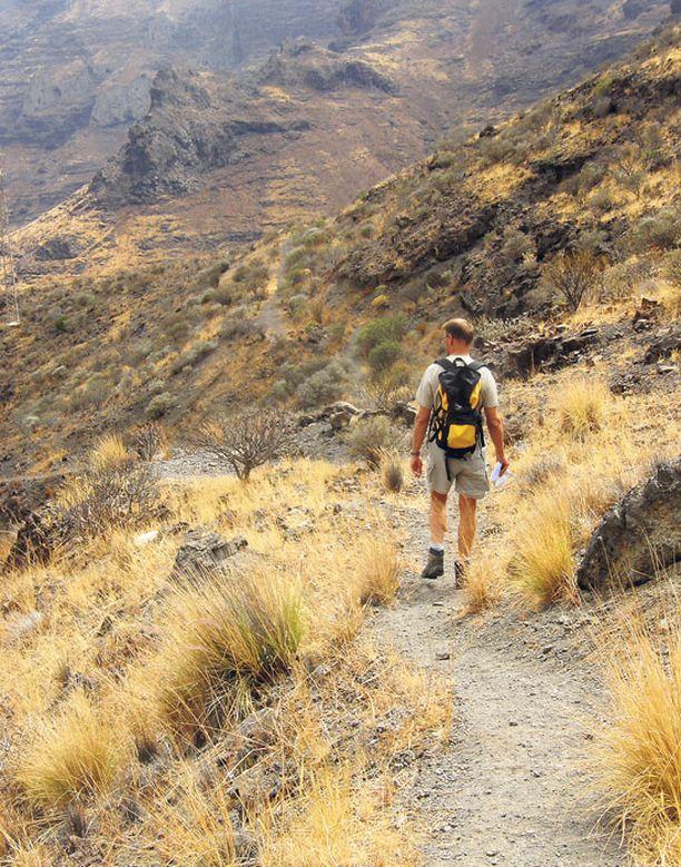Polku on ajoittain helposti seurattava, paikoin se häviää kasvillisuuden sekaan.