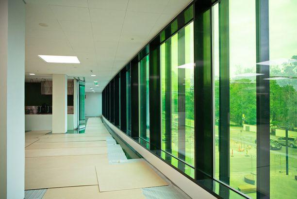 Suurilla ikkunoilla saadaan runsaasti luonnonvaloa sisätiloihin.