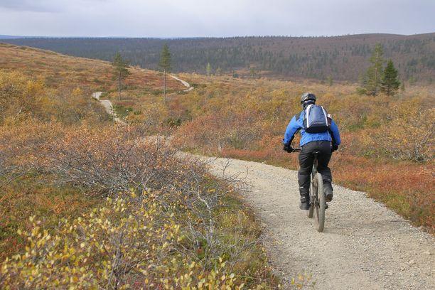Urho Kekkosen kansallispuistossa on rajatut pyöräilyreitit. Kuvituskuva.