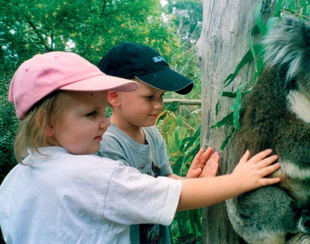 Kun Julia oli todettu terveeksi, Ollikaiset matkustivat pitkälle lomamatkalle Australiaan.