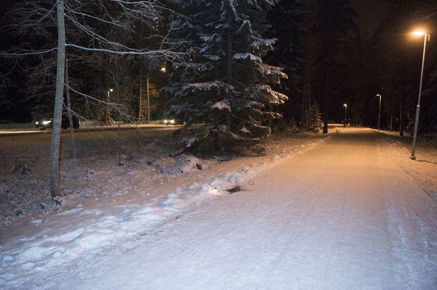 Tesoman valtatien viereinen kävelytie. Perheenisä löytyi surmattuna lumihangesta joulukuun 29. päivänä vuonna 2014.