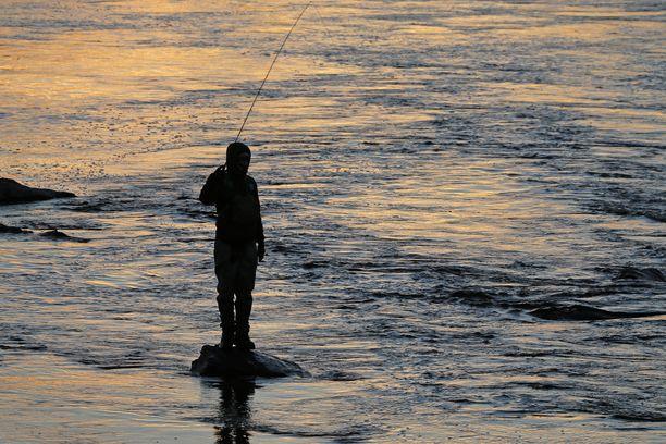 Kalastaja Pielisjoella Länsikoskessa Joensuussa.