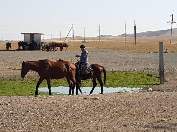 Hevoset ovat edelleen olennainen osa Kazakstanin maaseutua.