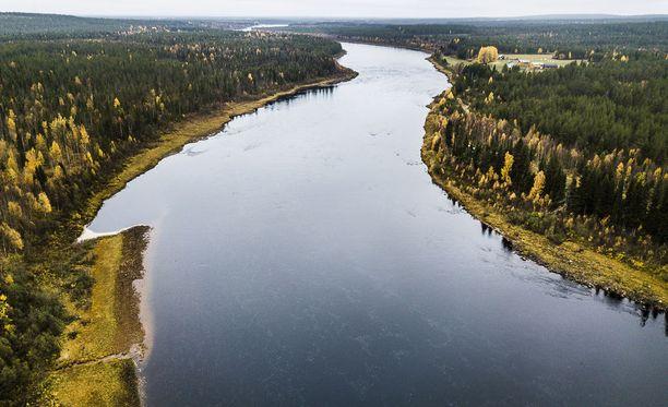 Tulvista on tulossa tänä vuonna Torniossa tavanomaista suuremmat. Kuvassa Tornionjoen sivujoki Muonionjoki.