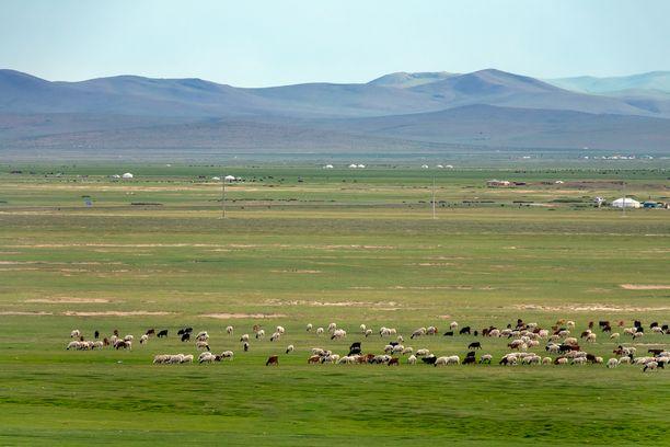 Mongolialaista maisemaa. Kuvituskuva.