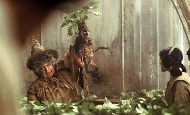Kuvassa Miriam Margolyes on Harry Potter ja salaisuuksien kammio -elokuvassa.