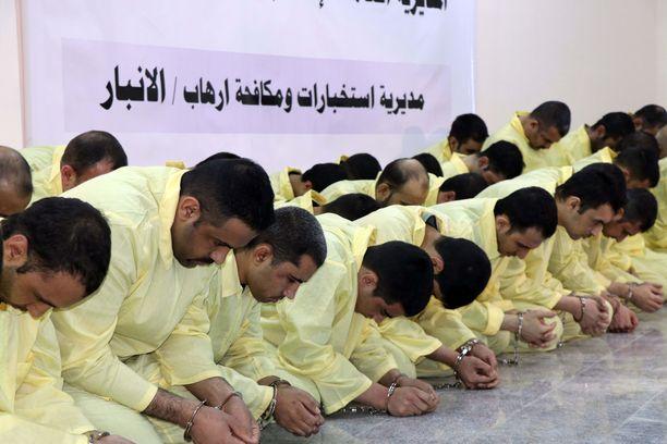 Vangittuja Isis-taistelijoita Irakin Anbarissa. Kuva on otettu helmikuun 11. päivänä.