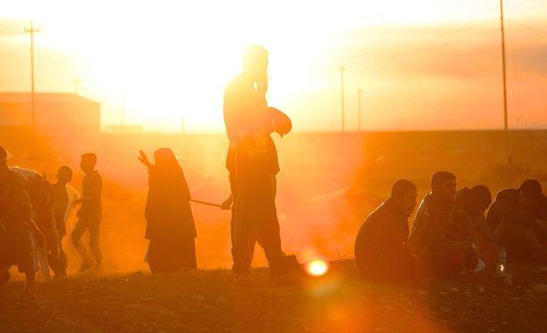 Kuvassa siviileitä, jotka jättvät kotinsa ja pakenevat taisteluiden alta Irakissa.