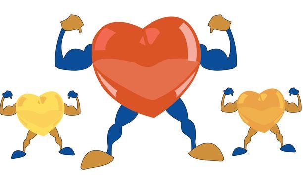 Sydän vahvistuu kuntoillessa.