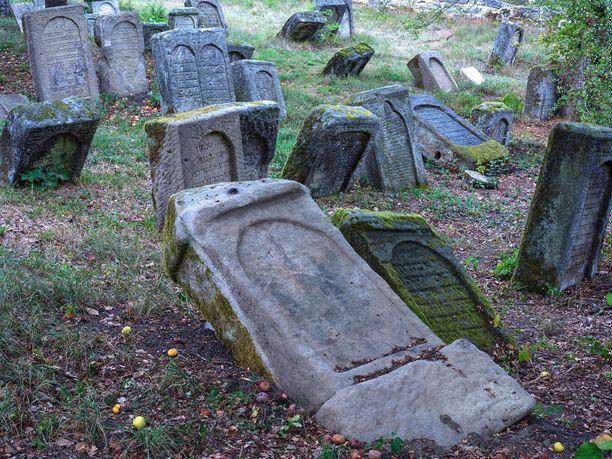 Kuvituskuva kaadetuista hautakivistä juutalaisella hautausmaalla Saksassa.
