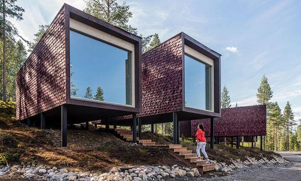 Arctic Treehouse Hotel saa lisää asuttavia käpylehmiä.