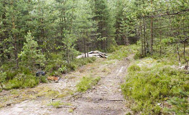 Tämän metsäaukean vierestä löydettiin raa'asti surmattu Tuula Lukkarinen.