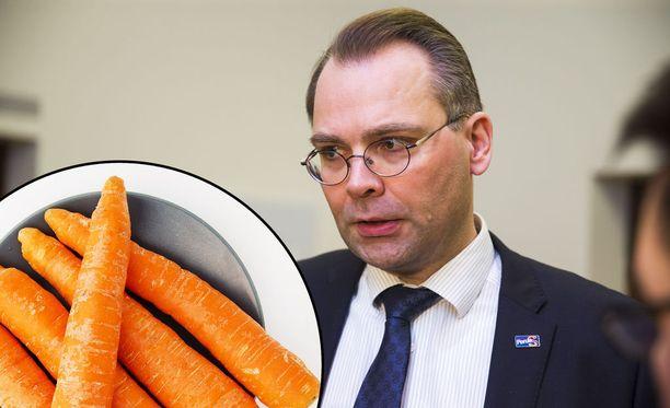 Jussi Niinistö kertoi Ylellä laskeneensa porkkanoiden energiapitoisuuksia.
