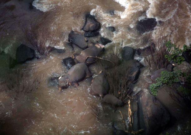 Kuuden elefantin ruumiit löydettiin vesiputouksen alta lauantaina aamuyöllä paikallista aikaa.