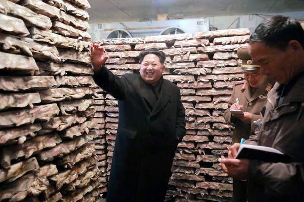 Kim Jong-un vieraili pohjoiskorealaisessa kalanviljelylaitoksessa viime viikolla.
