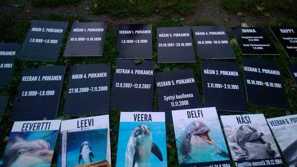 Lauantaina Särkänniemen edustalle tuotiin kylttejä, joissa mainittiin kaikki Särkänniemessä asuneet tai syntyneet delfiinit.