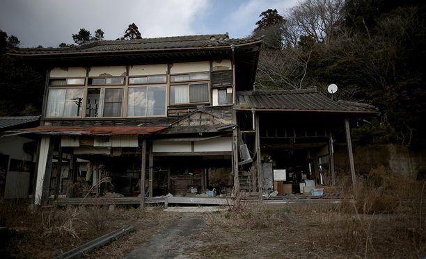 Hylätyt talot suljetulla vyöhykkeellä tarjoavat villisioille oivallisia pesäpaikkoja.